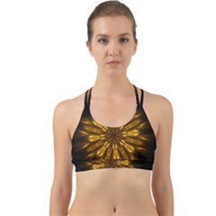 Mandala Gold Golden Fractal Back Web Sports Bra by Wegoenart