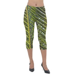 Palm Fronds Palm Palm Leaf Plant Lightweight Velour Capri Leggings