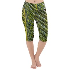 Palm Fronds Palm Palm Leaf Plant Lightweight Velour Cropped Yoga Leggings