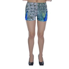 Peacock Bird Colorful Plumage Skinny Shorts