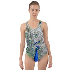 Peacock Bird Colorful Plumage Cut Out Back One Piece Swimsuit