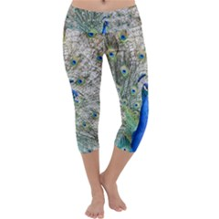 Peacock Bird Colorful Plumage Capri Yoga Leggings