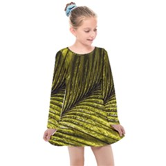 Feather Macro Bird Plumage Nature Kids  Long Sleeve Dress by Wegoenart