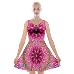 Flower Mandala Art Pink Abstract Velvet Skater Dress