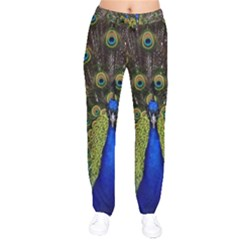 Peacock Bird Plumage Display Full Velvet Drawstring Pants