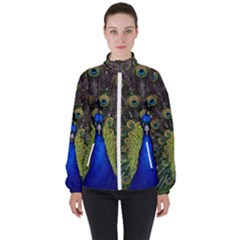 Peacock Bird Plumage Display Full High Neck Windbreaker (women) by Wegoenart