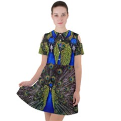 Peacock Bird Plumage Display Full Short Sleeve Shoulder Cut Out Dress