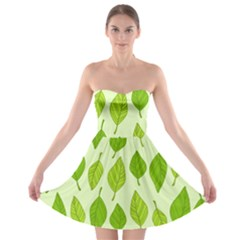 Autumn Background Boxes Green Leaf Strapless Bra Top Dress