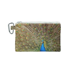 Peacock Plumage Bird Peafowl Canvas Cosmetic Bag (small)
