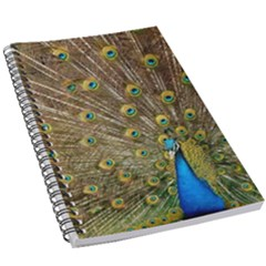 Peacock Plumage Bird Peafowl 5 5  X 8 5  Notebook by Wegoenart