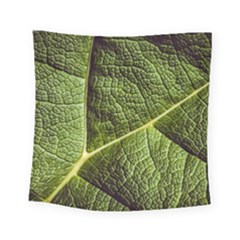 Green Leaf Giant Rhubarb Mammoth Sheet Square Tapestry (small)