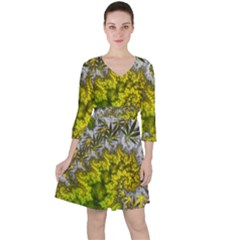 Fractal Mobius Dragon Marijuana Ruffle Dress