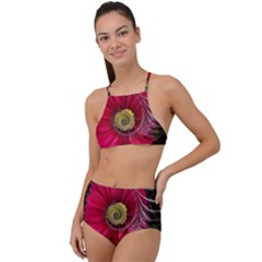 Fantasy Flower Fractal Blossom High Waist Tankini Set by Wegoenart