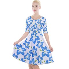 Blue Blossom Quarter Sleeve A Line Dress