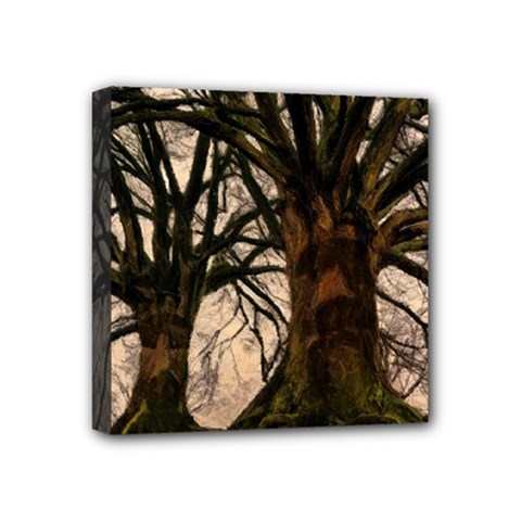 Ent Treant Trees Tree Bark Barks Mini Canvas 4  X 4  (stretched)
