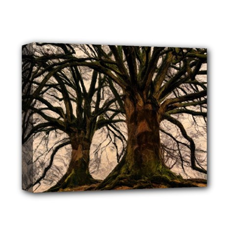 Ent Treant Trees Tree Bark Barks Deluxe Canvas 14  X 11  (stretched) by Pakrebo