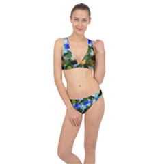 Texture Color Colors Network Classic Banded Bikini Set