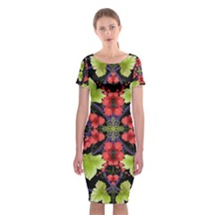 Pattern Berry Red Currant Plant Classic Short Sleeve Midi Dress by Pakrebo