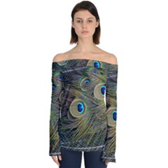 Peacock Tail Feathers Close Up Off Shoulder Long Sleeve Top by Pakrebo