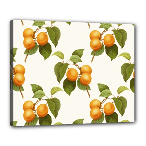 Apricot Fruit Vintage Art Canvas 20  X 16  (stretched)