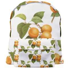 Apricot Fruit Vintage Art Giant Full Print Backpack