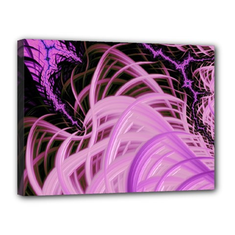 Purple Fractal Artwork Feather Canvas 16  X 12  (stretched)