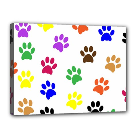 Pawprints Paw Prints Paw Animal Canvas 16  X 12  (stretched)