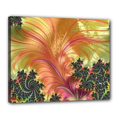 Fractal Feather Artwork Art Canvas 20  X 16  (stretched) by Pakrebo
