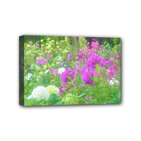 Annabella Hydrangeas And Purple Garden Landscape Mini Canvas 6  X 4  (stretched)