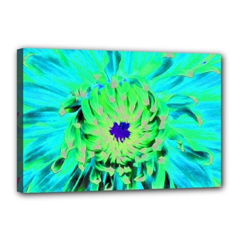 Aqua Cactus Dahlia Canvas 18  X 12  (stretched)