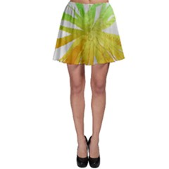 Abstract Background Tremble Render Skater Skirt by Mariart