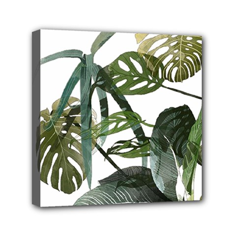 Botanical Illustration Palm Leaf Mini Canvas 6  X 6  (stretched) by Mariart