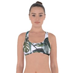 Botanical Illustration Palm Leaf Got No Strings Sports Bra by Mariart