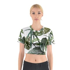Botanical Illustration Palm Leaf Cotton Crop Top by Mariart