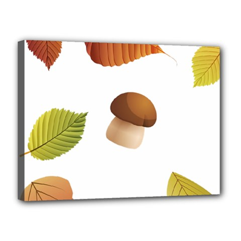 Leaves Mushrooms Canvas 16  X 12  (stretched)