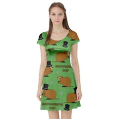 Groundhog Day Pattern Short Sleeve Skater Dress