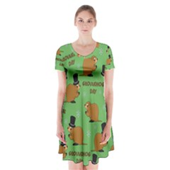 Groundhog Day Pattern Short Sleeve V Neck Flare Dress