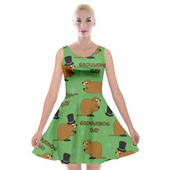 Groundhog Day Pattern Velvet Skater Dress