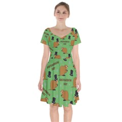 Groundhog Day Pattern Short Sleeve Bardot Dress