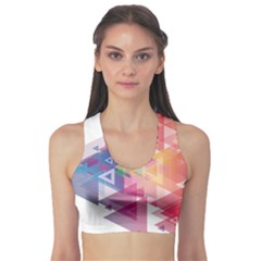 Science And Technology Triangle Sports Bra