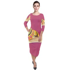 Snail Color Nature Animal Quarter Sleeve Midi Velour Bodycon Dress by Alisyart