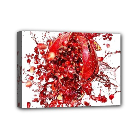 Red Pomegranate Fried Fruit Juice Mini Canvas 7  X 5  (stretched) by Mariart