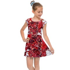 Red Pomegranate Fried Fruit Juice Kids  Cap Sleeve Dress