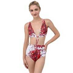 Red Pomegranate Fried Fruit Juice Tied Up Two Piece Swimsuit