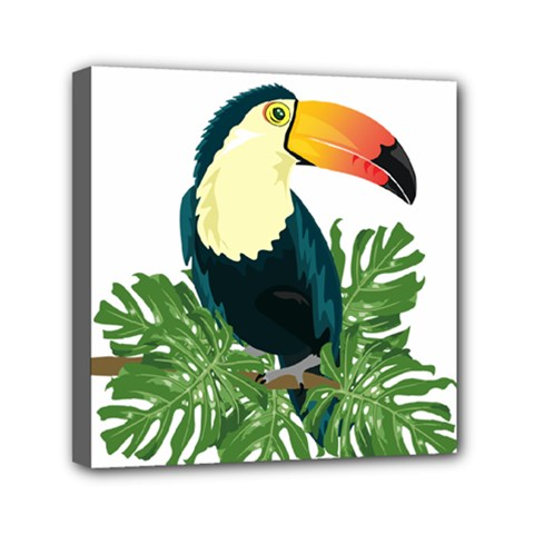 Tropical Birds Mini Canvas 6  X 6  (stretched)