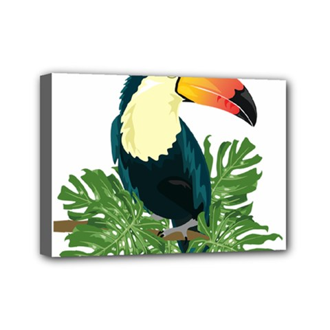 Tropical Birds Mini Canvas 7  X 5  (stretched)