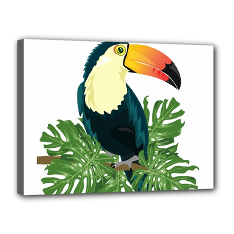 Tropical Birds Canvas 16  X 12  (stretched)