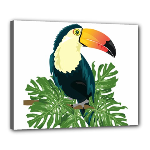 Tropical Birds Canvas 20  X 16  (stretched)