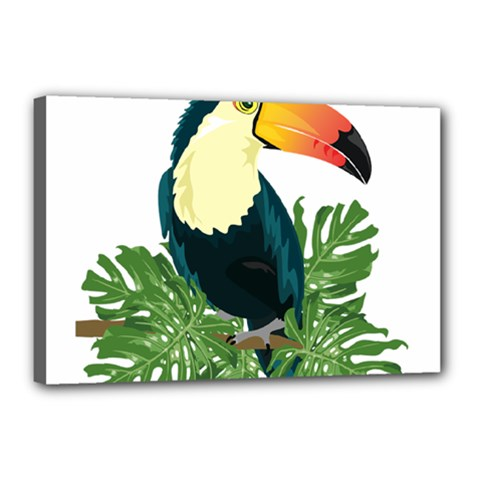 Tropical Birds Canvas 18  X 12  (stretched)