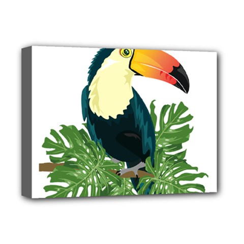 Tropical Birds Deluxe Canvas 16  X 12  (stretched)